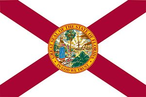 IT Services & IT Contractor for Florida State Contracts