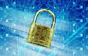 A Guide to Firewalls: Why You Might Need One